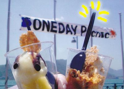 oneday picnic